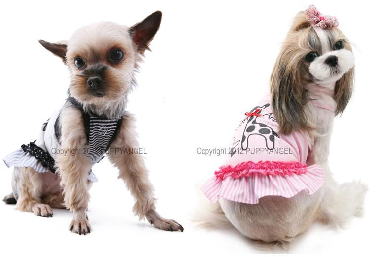 From Puppy Angel - UK's Top Puppy Fashion Center