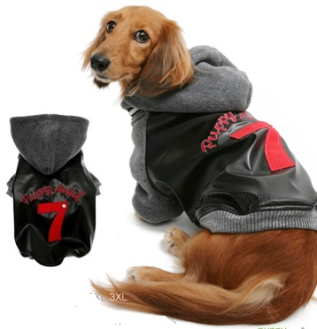 Puppy Angel - the ultimate in trendy puppy fashion