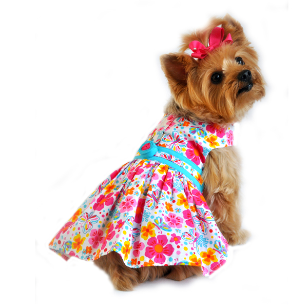 From the Top Fashion Designers of Puppy Fashion