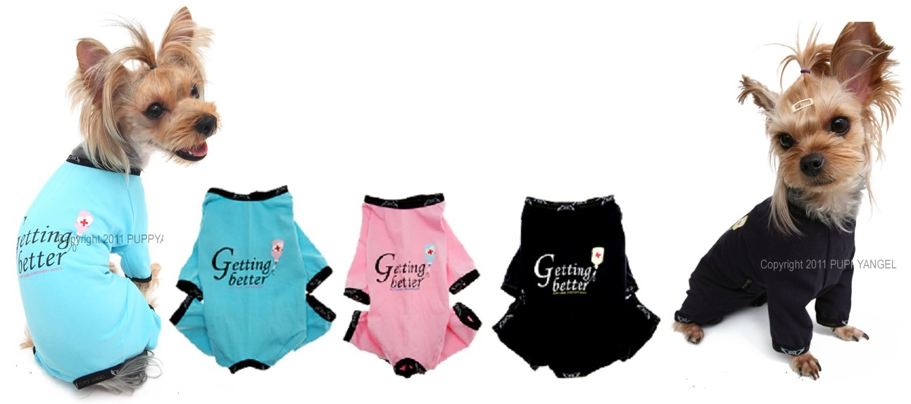 Exclusive fromj Puppy Angel - The Puppy Fashion Center of the World