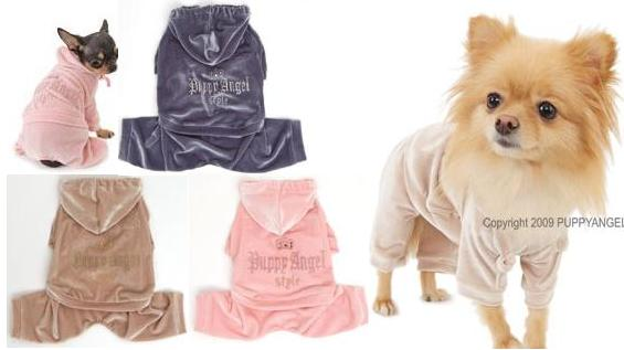Puppy Angel - the ultimate high fashion for dogs