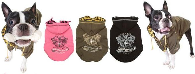 Puppy Angel - the ultimate in trendy fashion hoodies for dogs